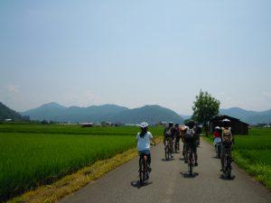 Standard Cycling Tour