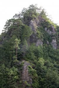 a male rock