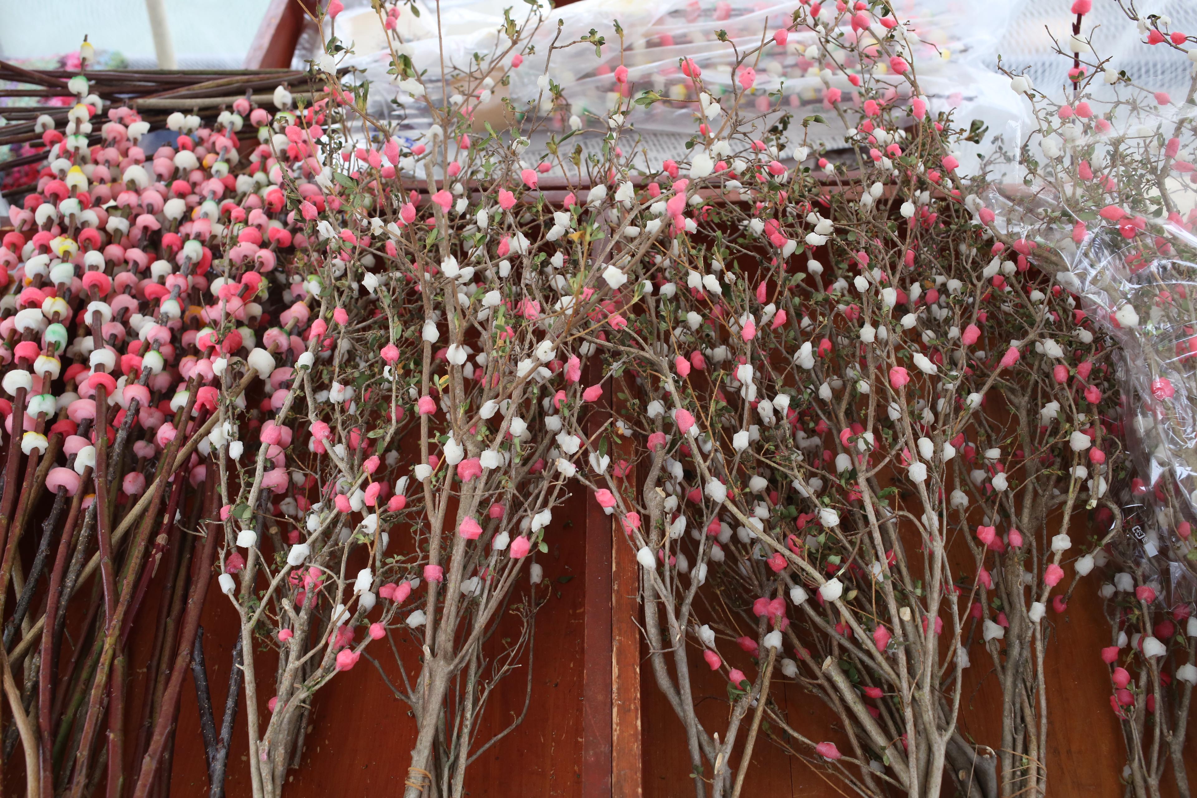 Flowers Are In Full Bloom In Winter Satoyama Experience